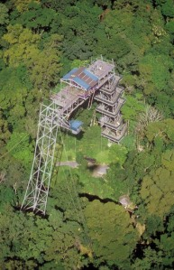 Cairns-Bungy-Platform