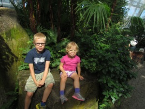 46.  The Butterfly Conservatory in Niagara Falls.
